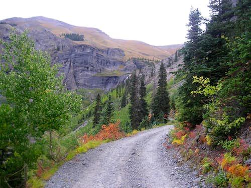 Black Bear Road