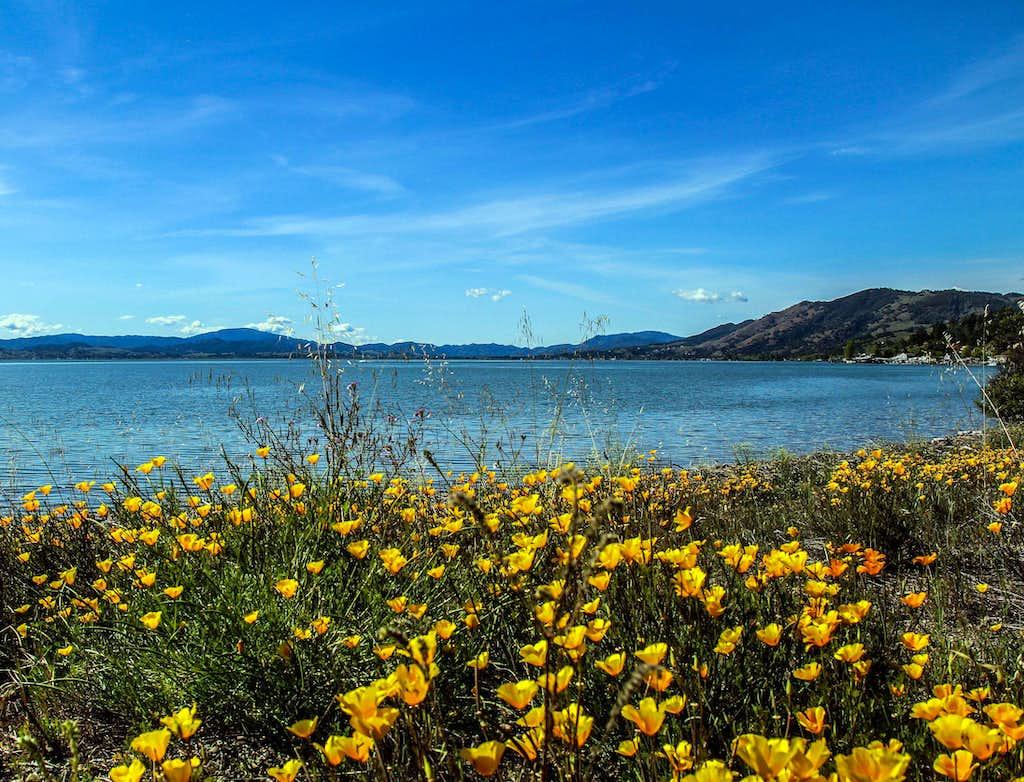 Northwest Clear Lake