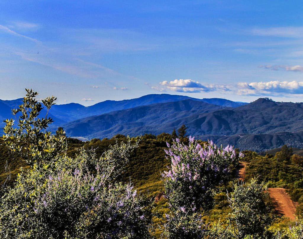 Northwest from Hogback Ridge