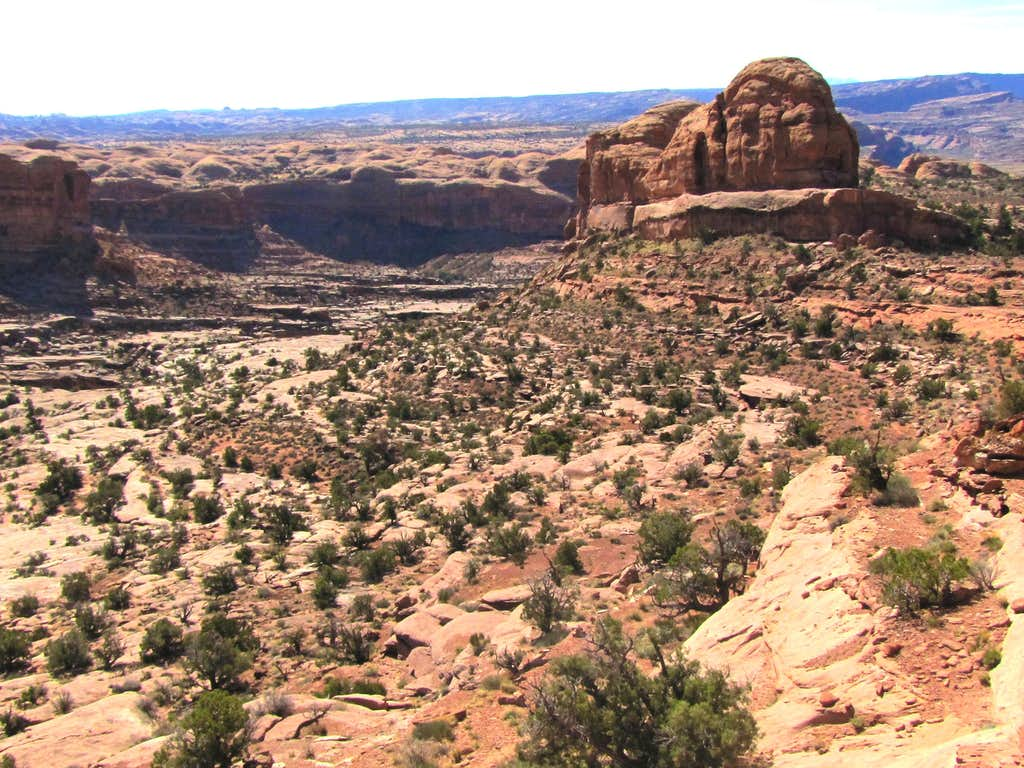 On Jeep Arch Trail