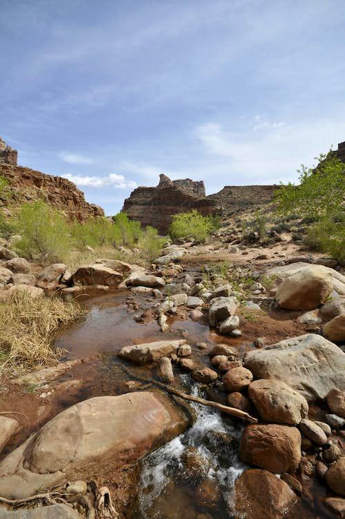 Dark Canyon Creek