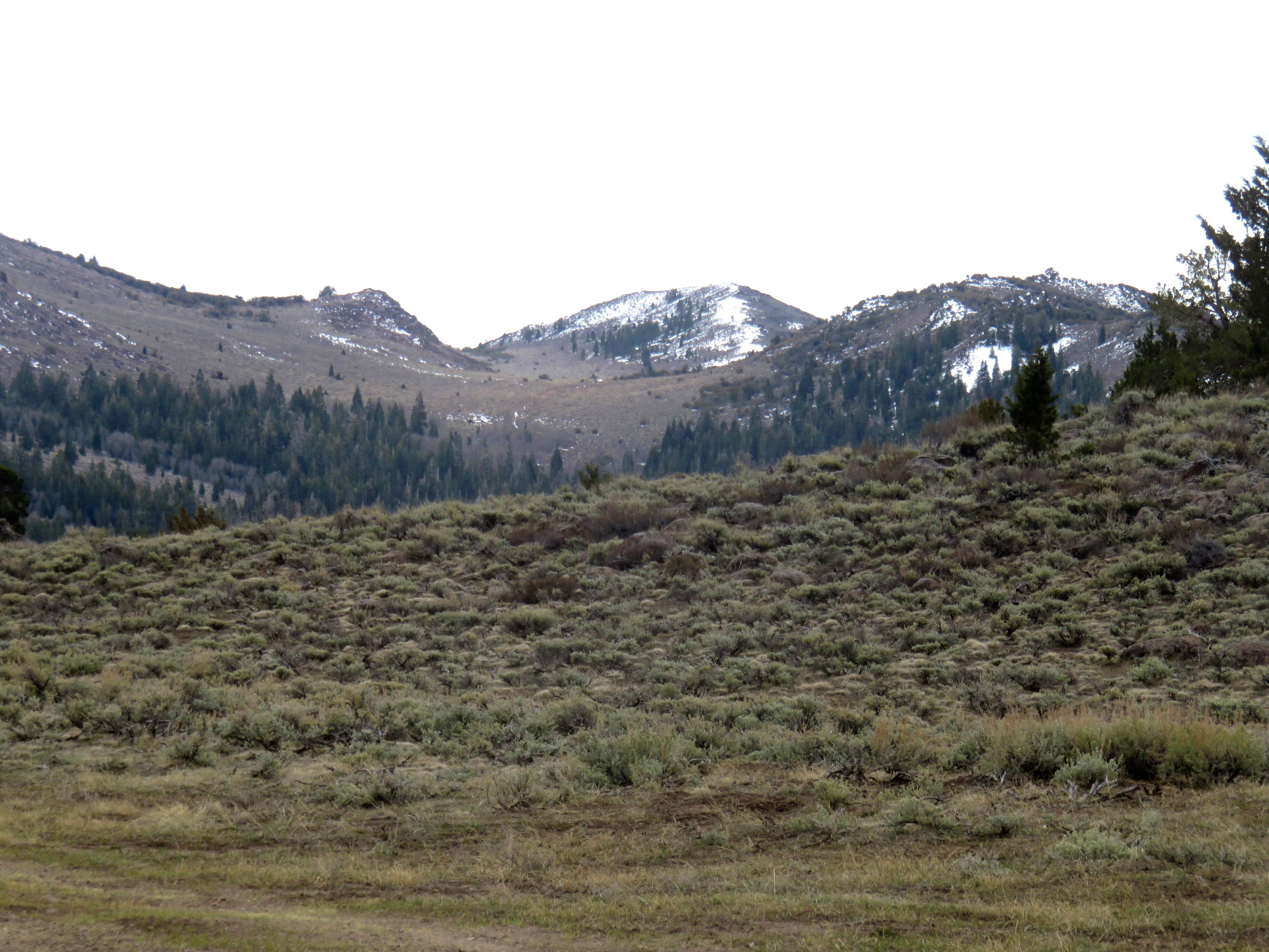 South Monitor Pass Peak – Peak 8930