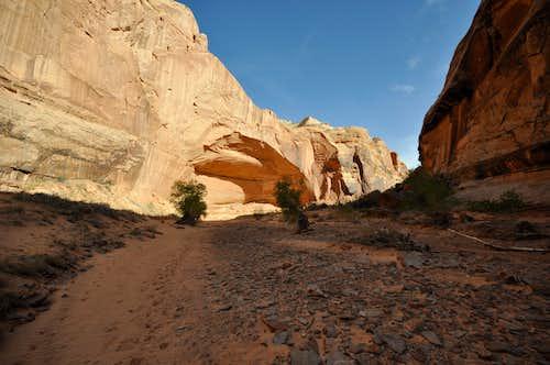 Horseshoe Canyon Alcove