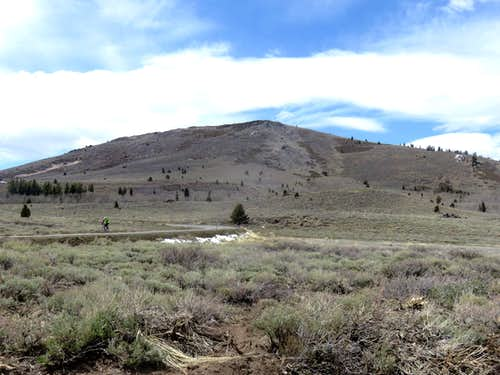 View to Leviathan Peak from Big Springs Road en route to Dome 2