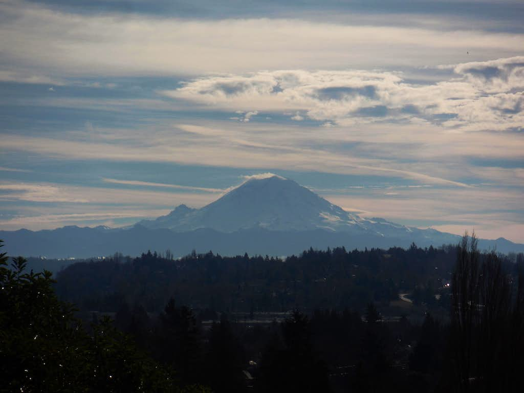 Mount Rainier from Duwamish Hill