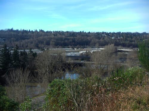 View of the Duwamish River
