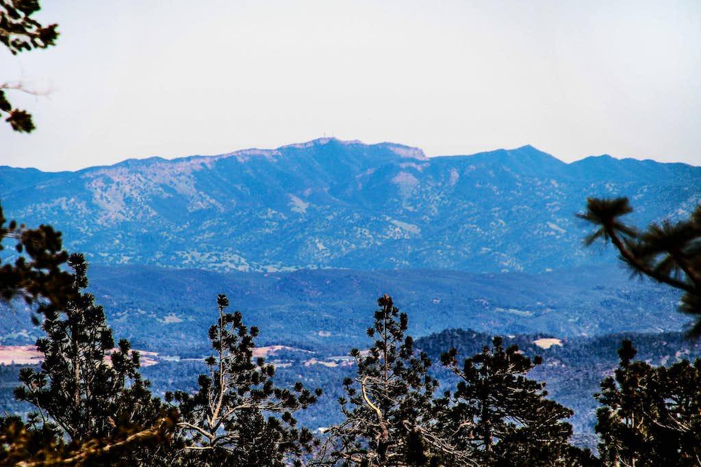 Berryessa Peak from Cobb Mtn.