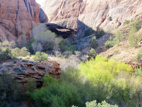 Morning Glory Natural Bridge