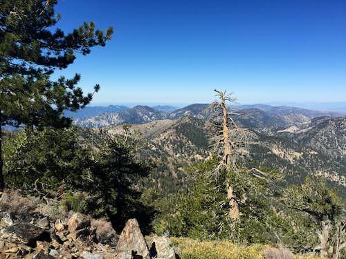 San Gabriel Mountains from Throop Peak