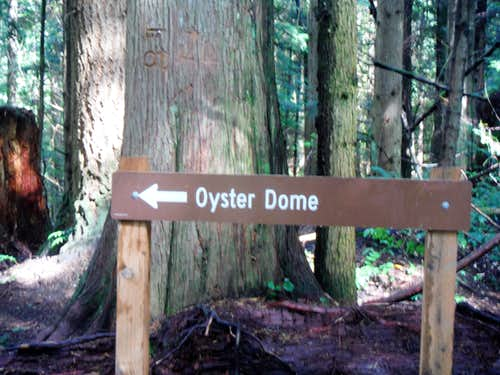Sign to Oyster Dome