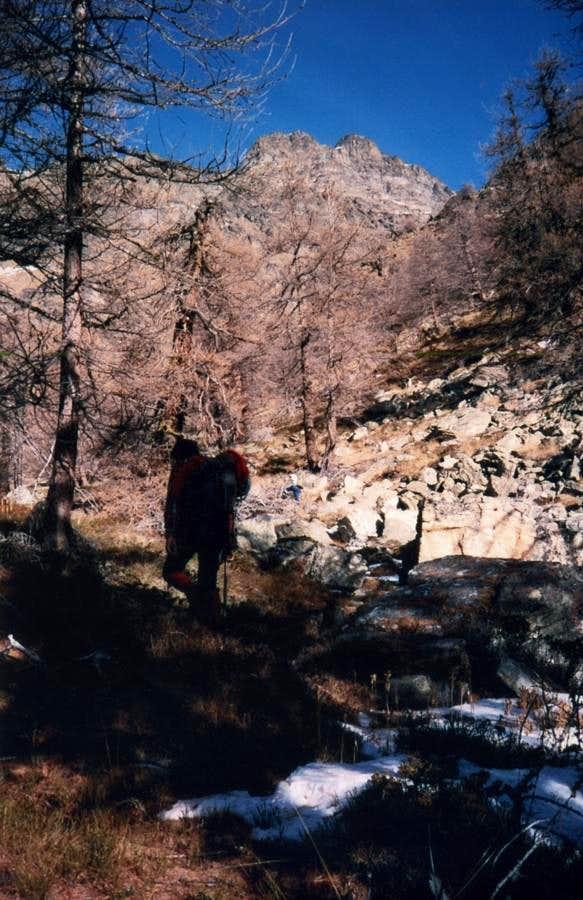 North Valley Towards Western Tsaat a l'Etsena 1985
