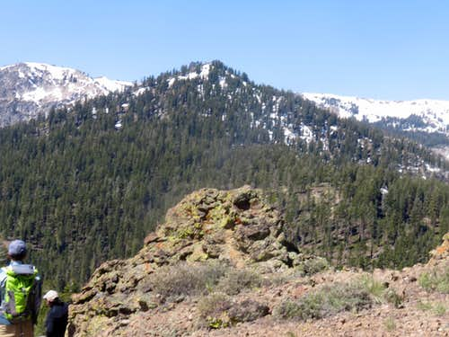 Frog Lake Peak 8,428' from Red Mountain 7,896'