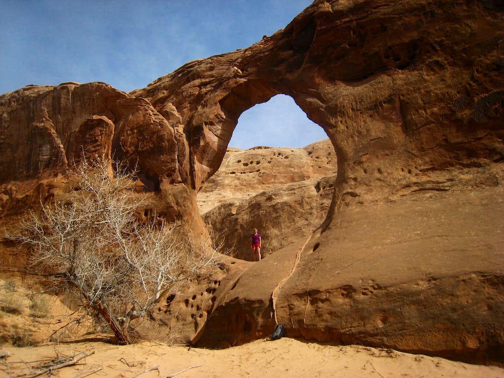 Buck Canyon Arch