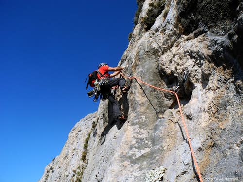 Wings for Life, the traverse pitch