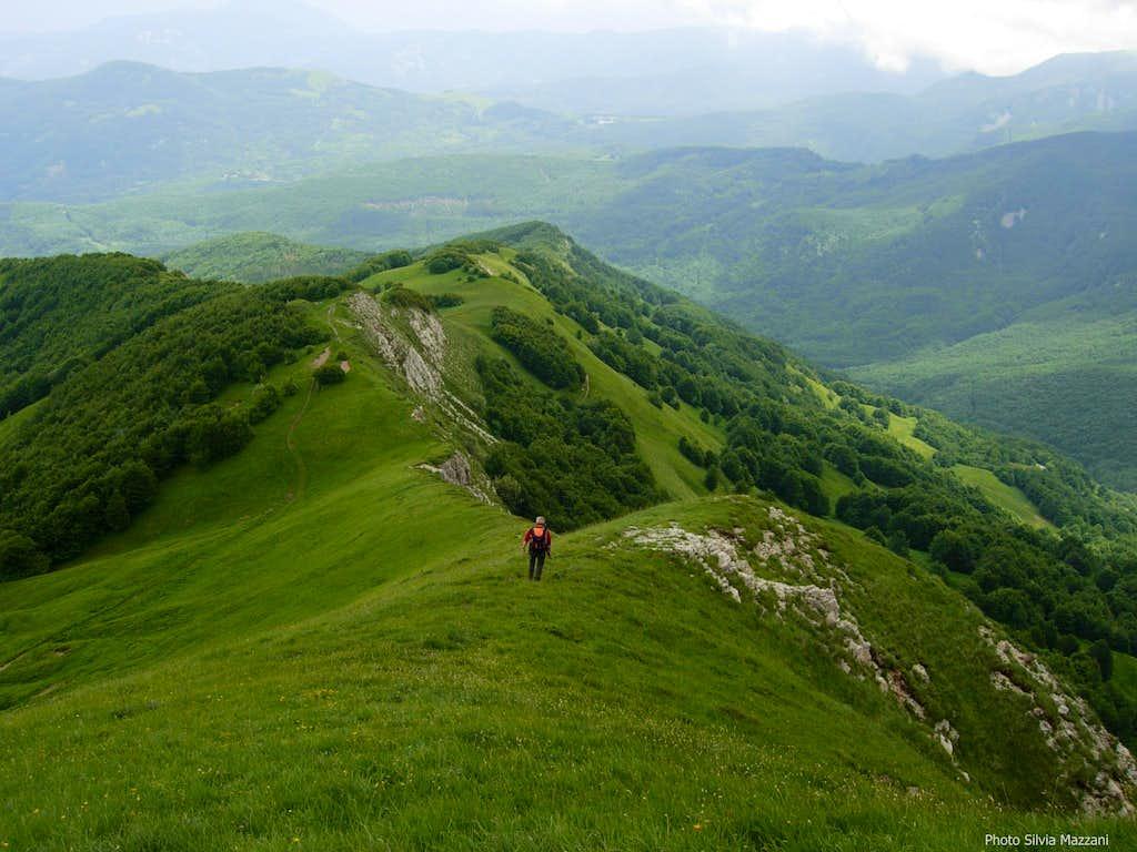 Grassy ridge on Navert