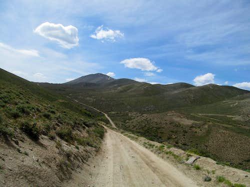 road to Ellen D