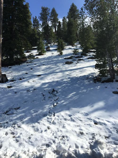 San Gabriel Mountains after May snowstorms