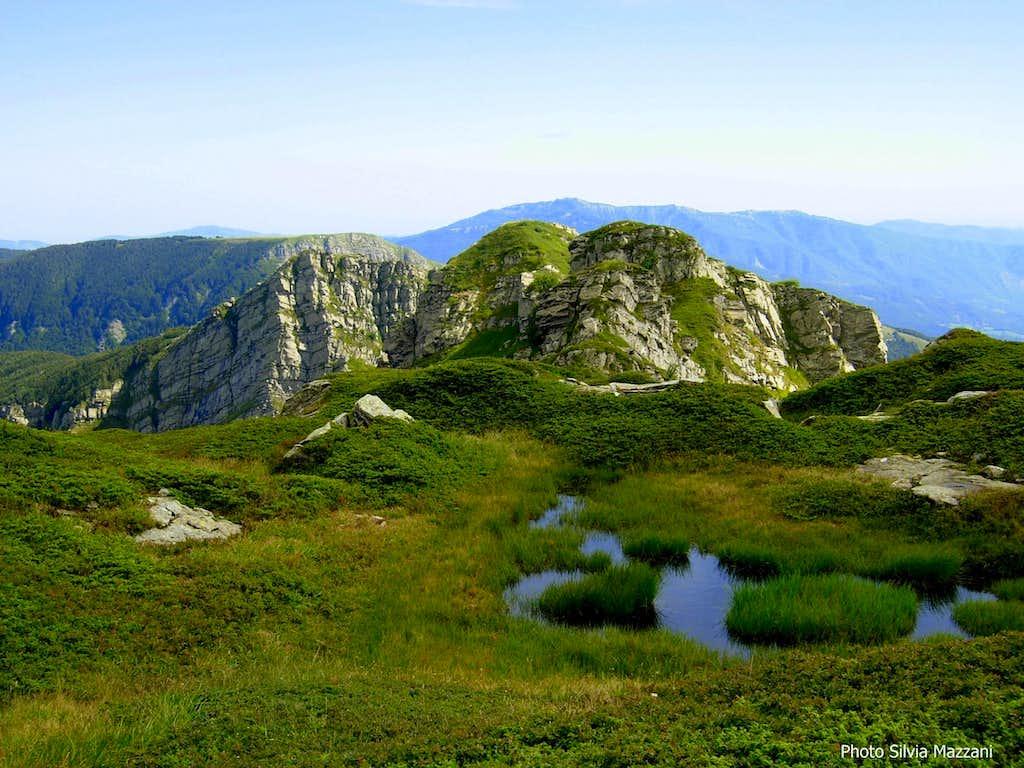 Pumaciolo high grasslands