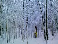 Snowy Kenosha Pass