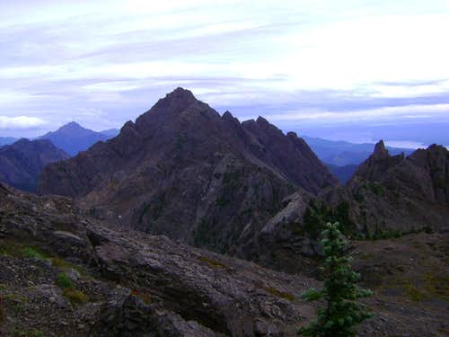 Near the summit of Mt. Ellinor