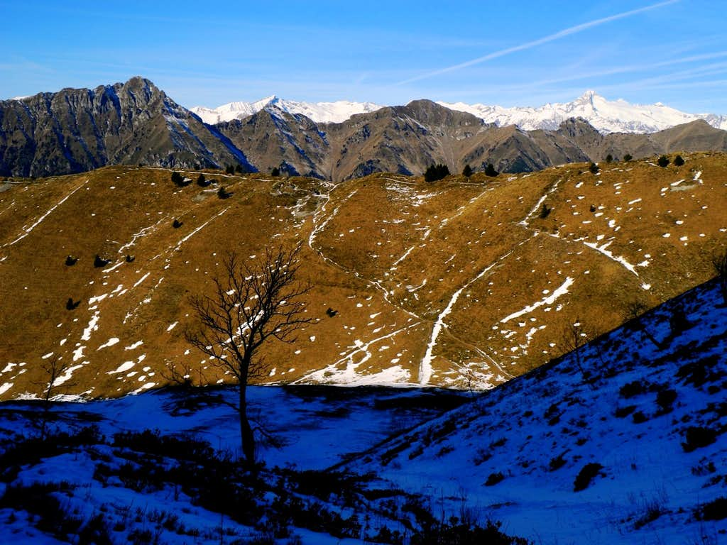 The wild Monte Cadria and Adamello Group in background