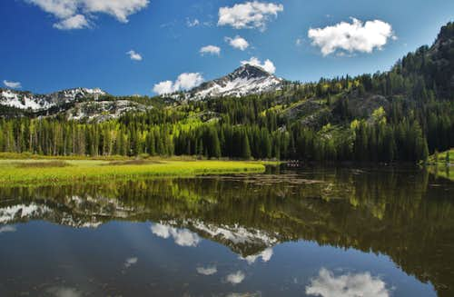 Mt. Millicent Over Silver Lake
