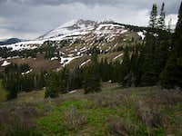 Mount McDougal, Wyoming 4