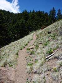 Short Steeper Trail