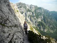 Life on the edge (ledge)
