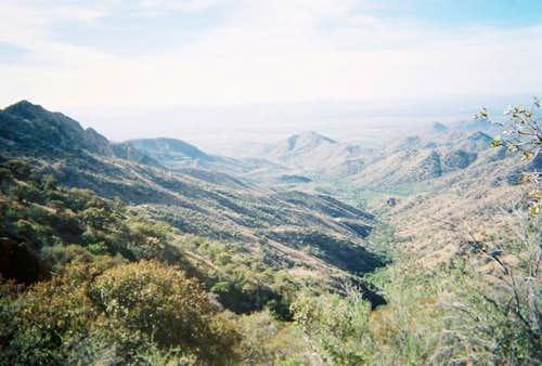 Looking down at Thomas Canyon.