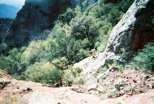 Climbing above the saddle...