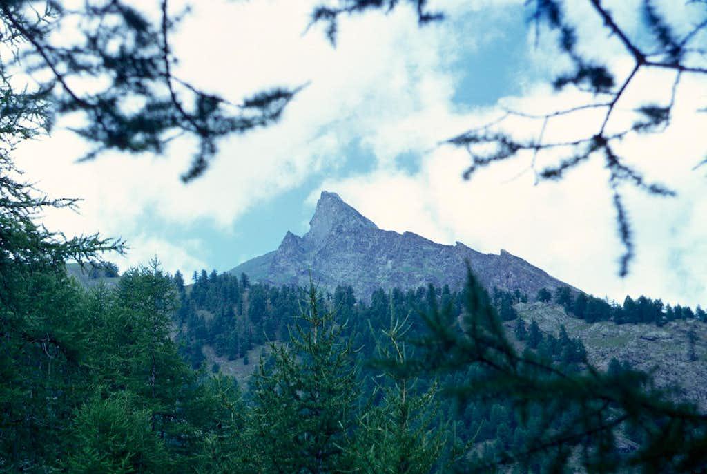 Pointe Pousset