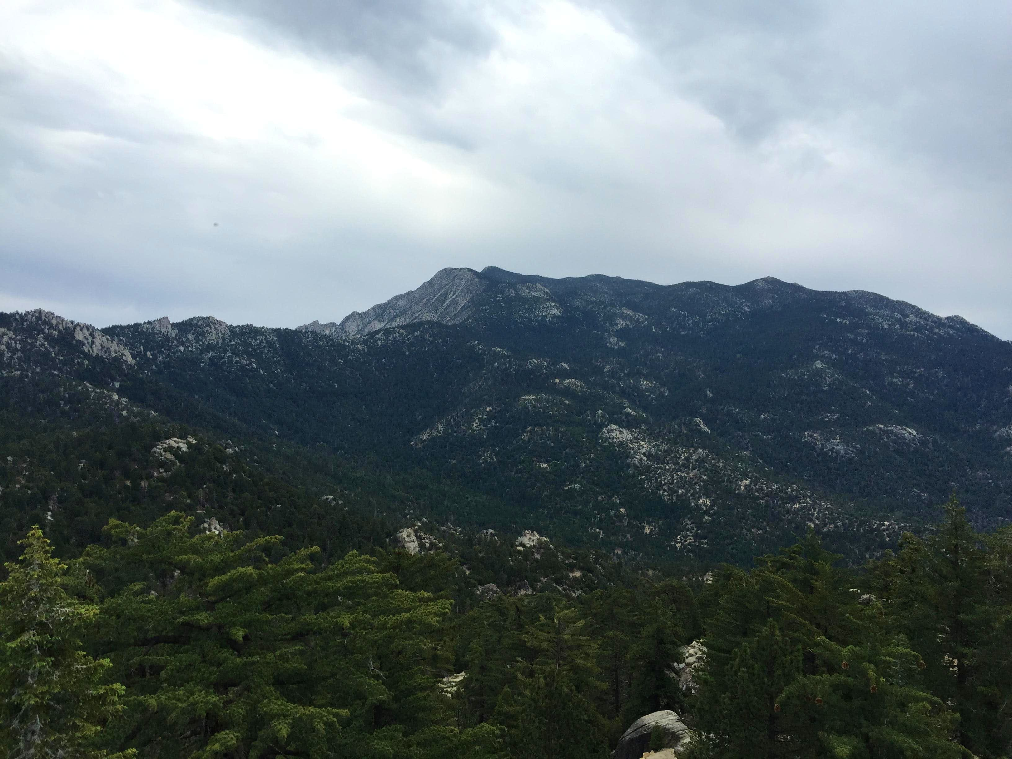 Black Mountain Hike (San Jacinto Mountains)
