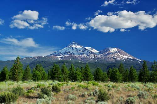 Mt. Shasta and Shastina