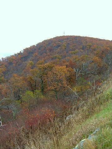 The summit of Hogback with...