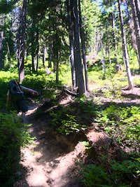 Leroy Creek Trail