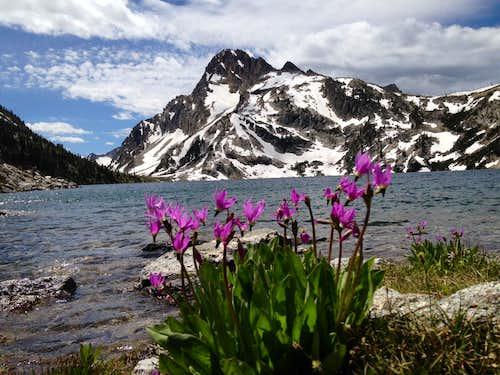 Mount Regan from across Sawtooth Lake