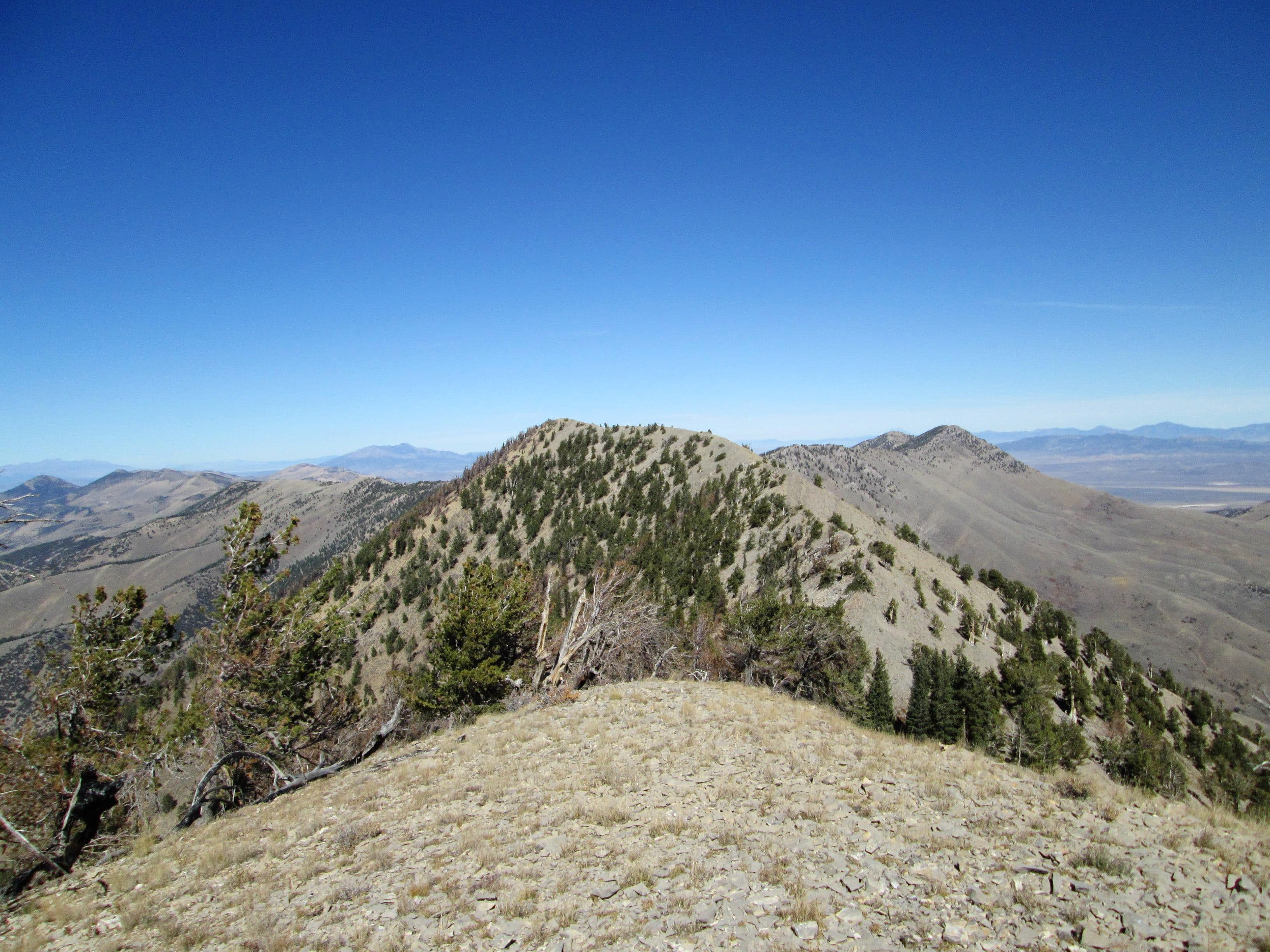 Snow Creek Peak 10459 (NV)