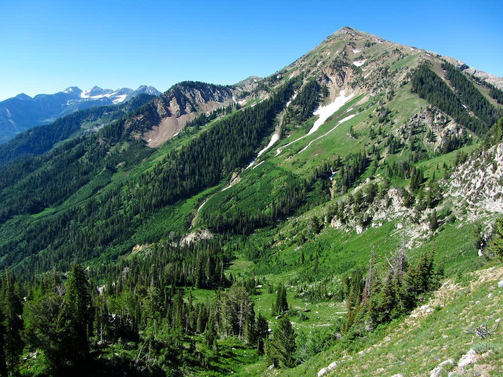 Box Elder Peak scenery