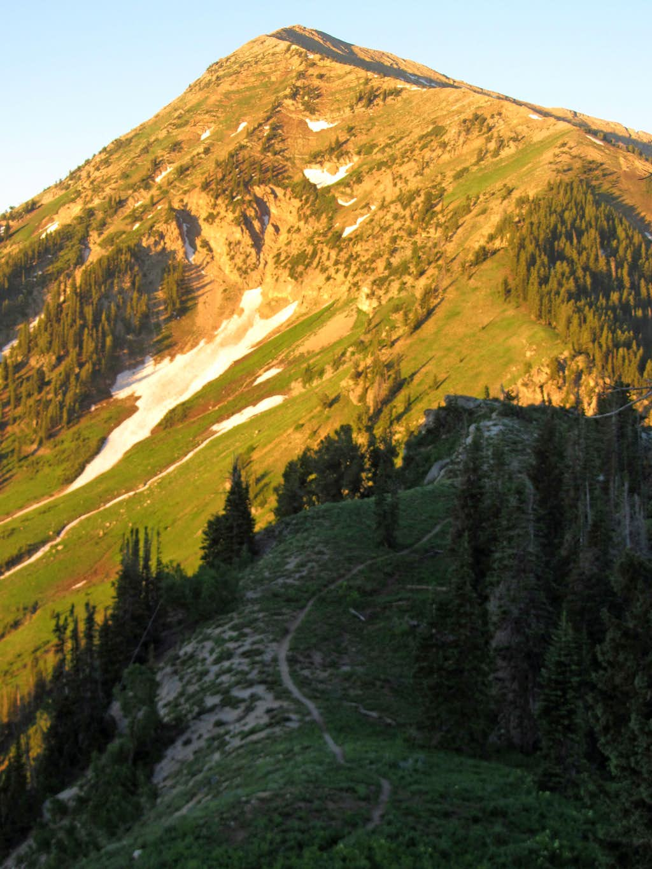Box Elder trail
