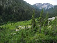 Fall Creek Meadow, Returning from the Rakers