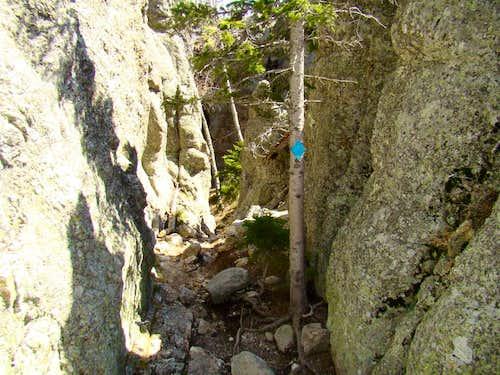 Where Trail 4 Narrows