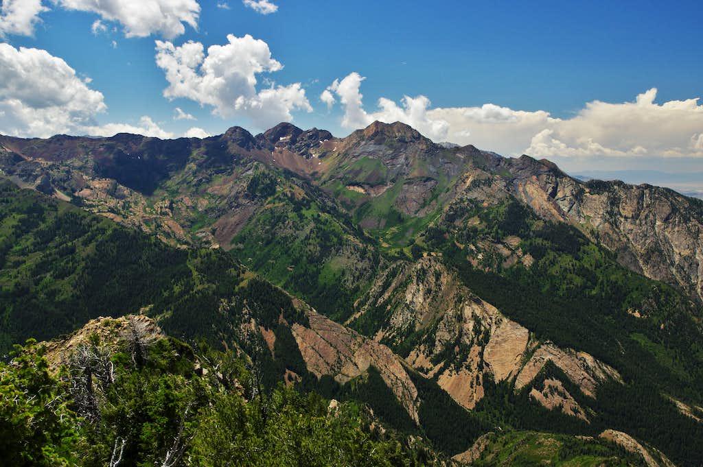 Mt. Raymond summit view