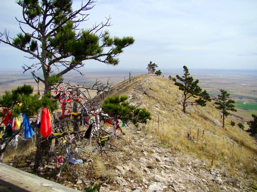 Summit View Northwest