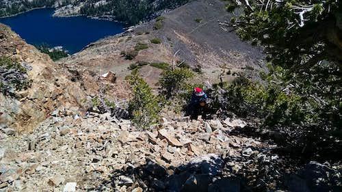 Dicks NE Ridge - Rafee at the top