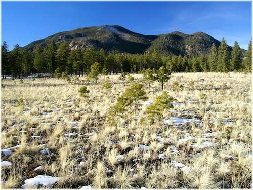 Buffalo Peak (11,589-ft) from...