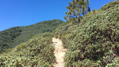 Santiago Peak Hike