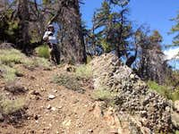 cobblestone rocks
