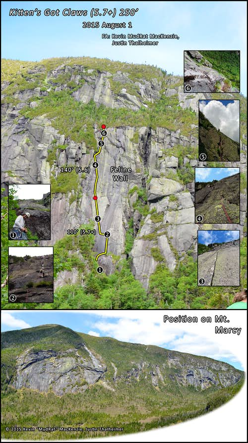 Panther Gorge-A New Marcy Route (Kitten's Got Claws) 2015  August 1