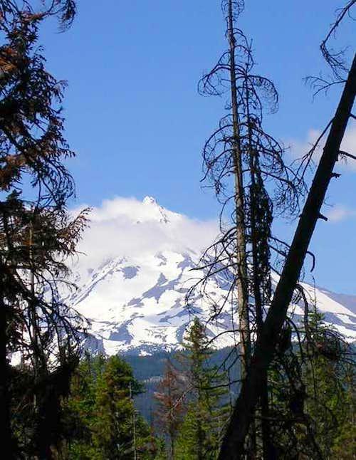Mt. Jefferson - Summer 2004